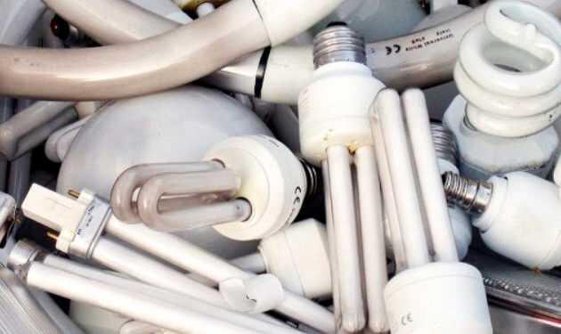 Куда сдать лампочки