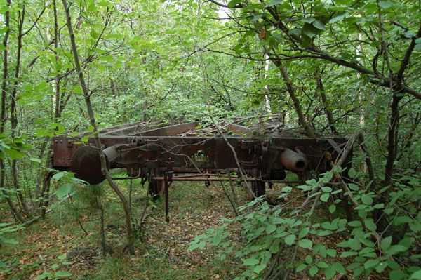 брошенная железная дорога в лесу