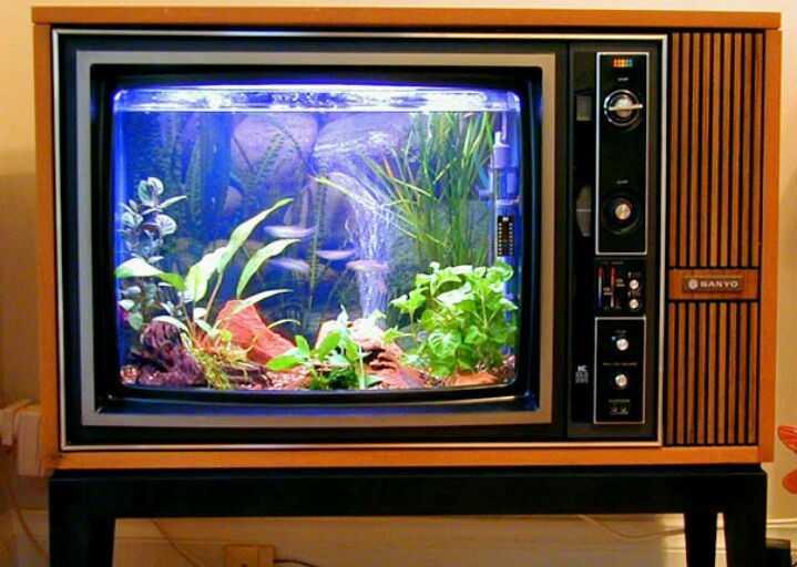 Еще один аквариум
