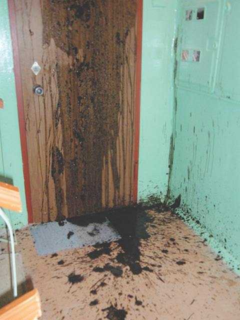 краской дверь - Борьба с незаконной свалкой