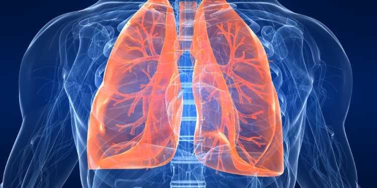признаки причины и симптомы 750x375 - Бериллий и его токсическое действие